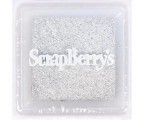 ScrapBerry`s Pigment Ink Pad silver