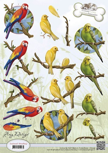 Amy Design - Animal Medley - Tropical Parrots