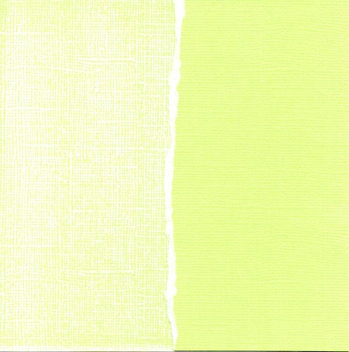 Cardstock apple green
