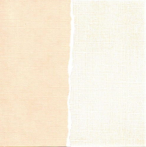 Cardstock coconut cream